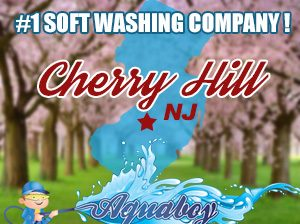 Cherry Hill House Soft Washing in NJ