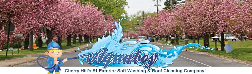 Cherry Hill House Soft Washing