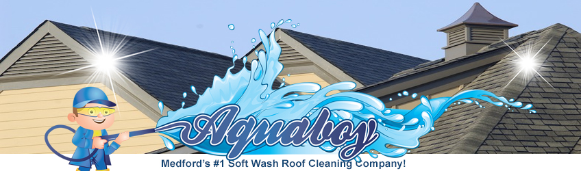 Medford's Best Soft Wash Roof Cleaning