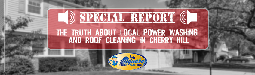 The Truth About Roof Cleaning and Power Washing in Cherry Hill