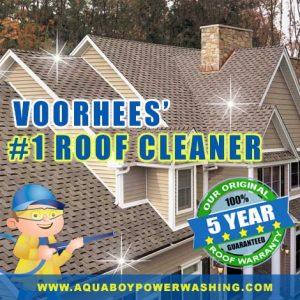Voorhees #1 roof Cleaner