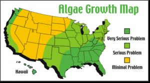 algae_map