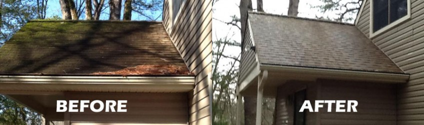 Soft Wash Roof Cleaning New Jersey