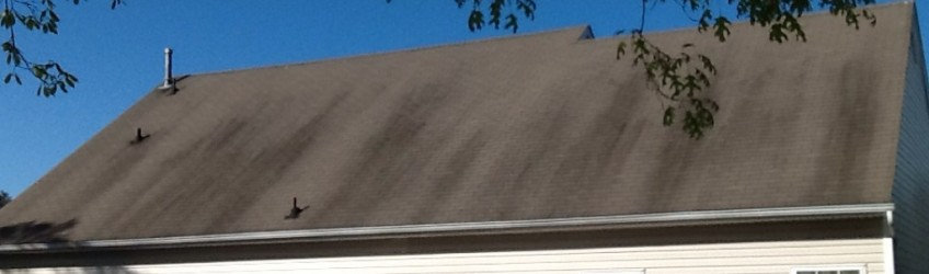 Roof Cleaning Washington Township