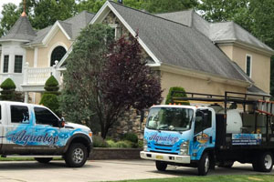 cherry hill roof cleaning total care package