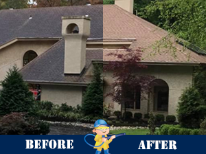 house soft wash before after